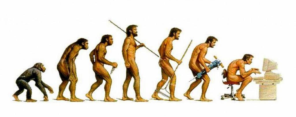 stone age evolution