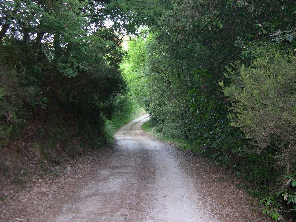 white-gravel-road