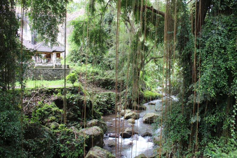 River-and-temple-jungle